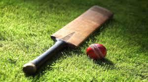 क्रिकेट खेलाडीलाइ भव्य विदाइ